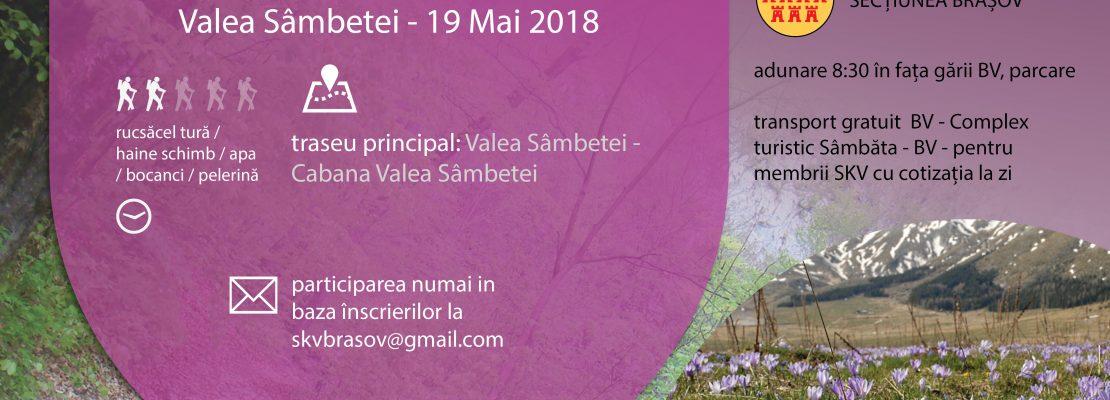 Invitatie la Drumetie la Cabana Valea Sambetei
