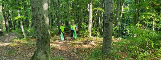 Actiune de ecologizare in Brasov